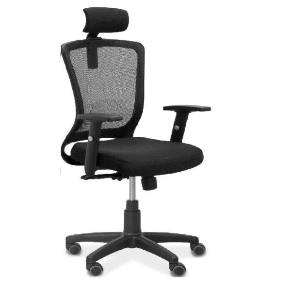 DSC_0010_Fusion_headrest