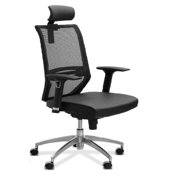 DSC_0020_Aero_X_headrest