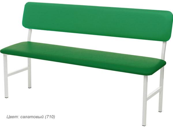 md_bc_light-green_710